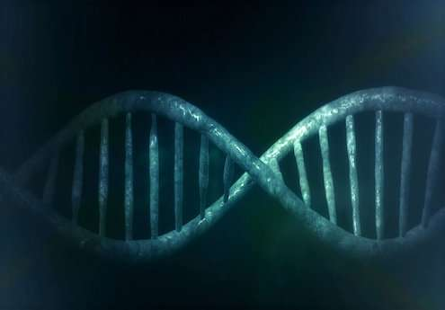 VJToday: CRISPR Clinical Trials for Cancer and Blood Disorders image